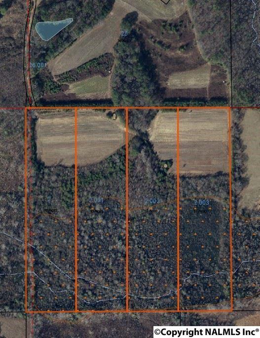 County Road 319, Collinsville, AL 35973 (MLS #1083742) :: Amanda Howard Real Estate™