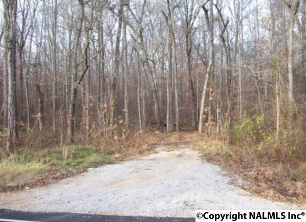 0 Bobo Section Road, Hazel Green, AL 35750 (MLS #1083858) :: RE/MAX Distinctive | Lowrey Team