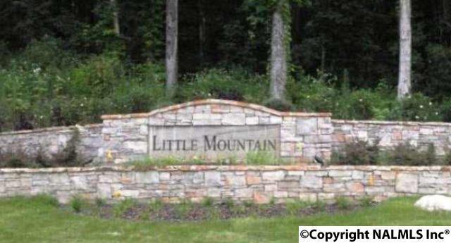 4707 Saddle Ridge Drive, Owens Cross Roads, AL 35763 (MLS #1084520) :: Amanda Howard Real Estate™