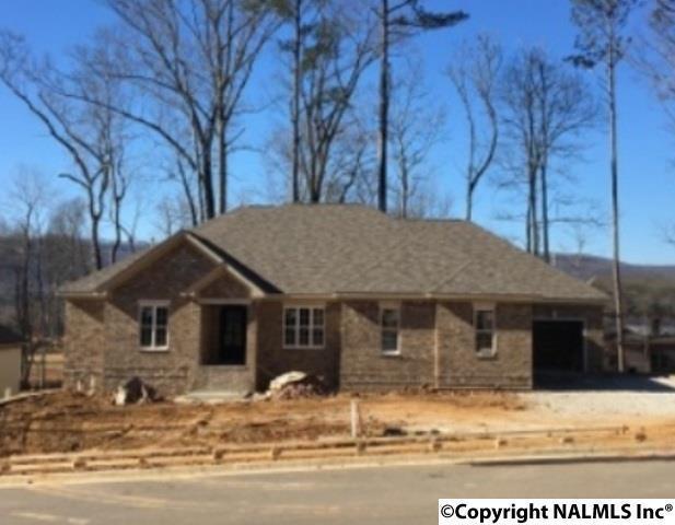 2606 Muir Woods Drive, Hampton Cove, AL 35763 (MLS #1084828) :: Amanda Howard Real Estate™