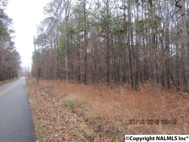 Black Road, Rainbow City, AL 35906 (MLS #1084910) :: Southern Shade Realty