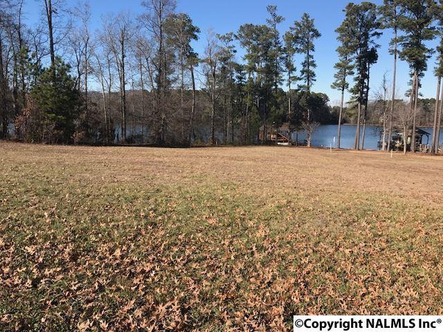Lot 28 Peninsula Drive, Scottsboro, AL 35769 (MLS #1085258) :: Amanda Howard Real Estate™