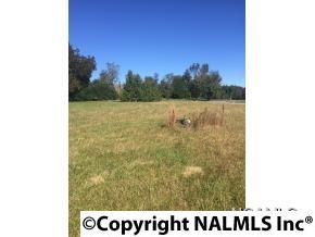 lot 40 Saint Michael Way, Hanceville, AL 35077 (MLS #1085696) :: Amanda Howard Real Estate™