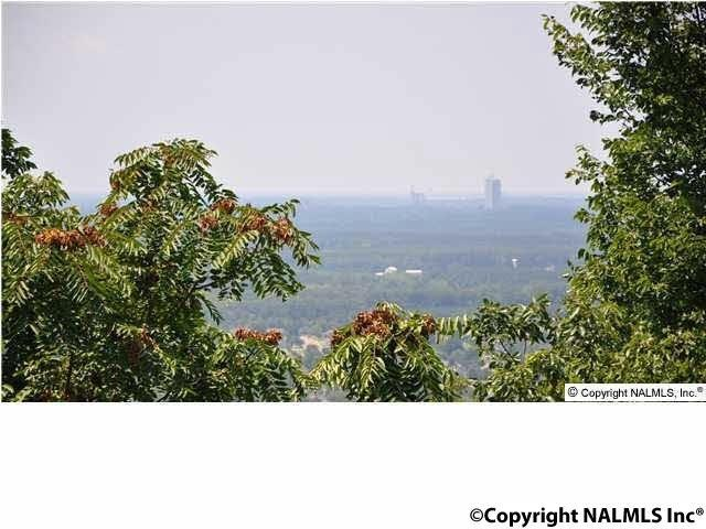 11006 Everest Circle, Huntsville, AL 35803 (MLS #1085919) :: Intero Real Estate Services Huntsville