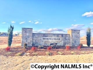 295 Abercorn Drive, Madison, AL 35756 (MLS #1086203) :: Amanda Howard Real Estate™