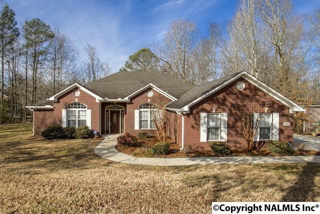 108 Iron Horse Trail, Harvest, AL 35749 (MLS #1086375) :: Amanda Howard Real Estate™