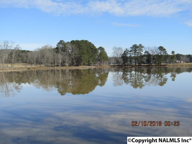 Muscadine Drive, Ashville, AL 35953 (MLS #1086691) :: Amanda Howard Real Estate™