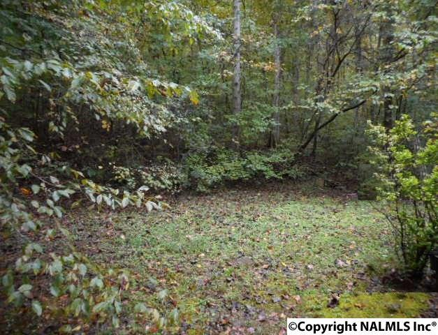 Lot 2 Blk 1 Old Gurley Pike, Owens Cross Roads, AL 35763 (MLS #1086972) :: RE/MAX Alliance