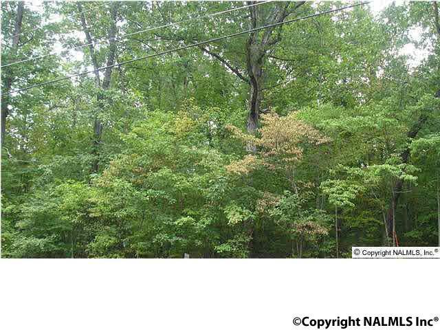 Beech Ridge, Gadsden, AL 35901 (MLS #1086986) :: Amanda Howard Real Estate™