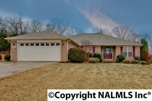 102 Burwell Cove Drive, Harvest, AL 35749 (MLS #1087382) :: Amanda Howard Real Estate™