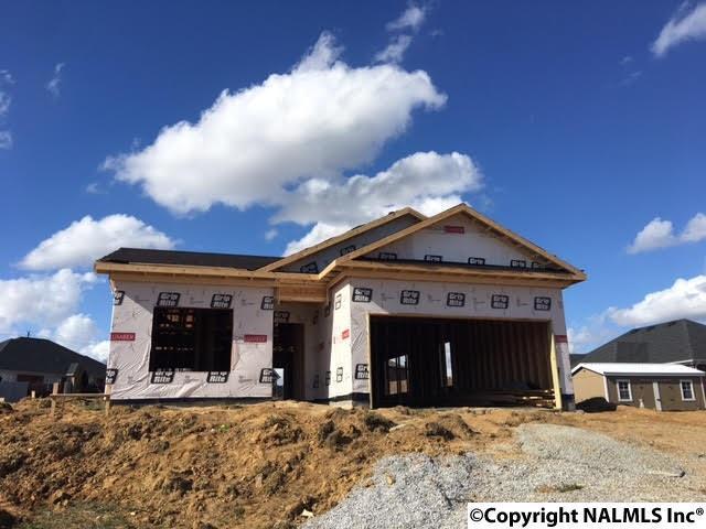 103 Caboose Trail, Harvest, AL 35749 (MLS #1087631) :: Amanda Howard Real Estate™