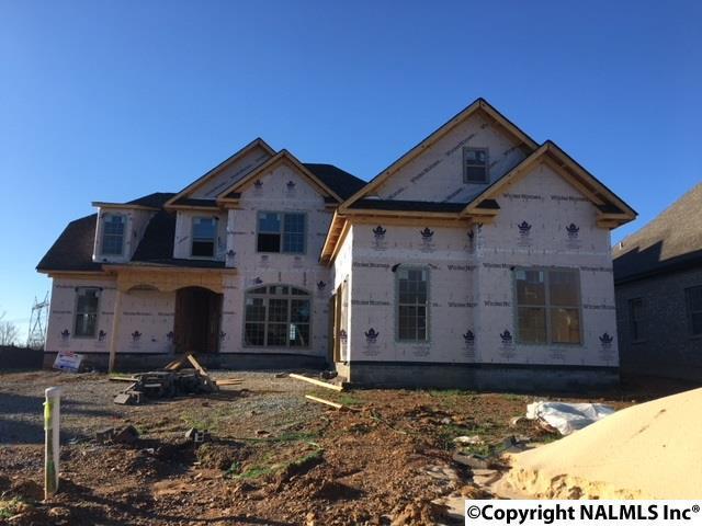 22926 Bluffview Drive, Athens, AL 35613 (MLS #1087966) :: Amanda Howard Real Estate™