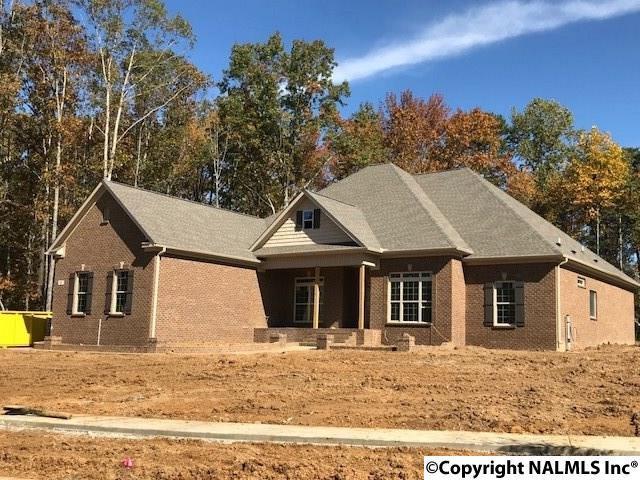 31 SE Natures Ridge Way, Huntsville, AL 35803 (MLS #1089100) :: Amanda Howard Real Estate™