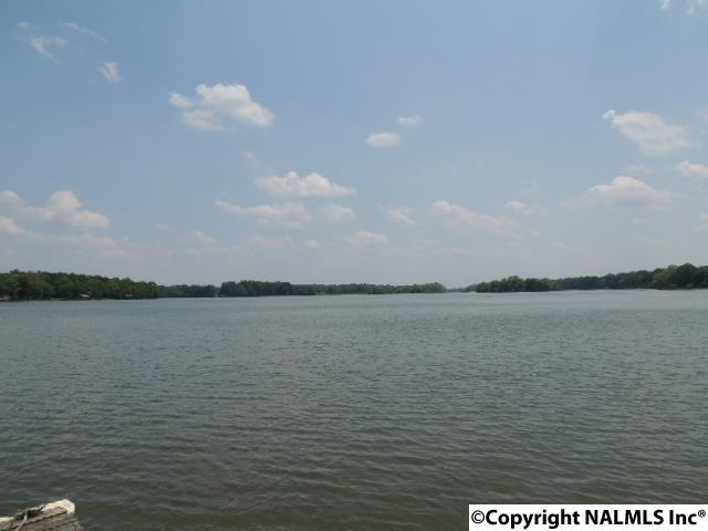 LOT 7 County Road 707, Cedar Bluff, AL 35959 (MLS #1089441) :: Capstone Realty