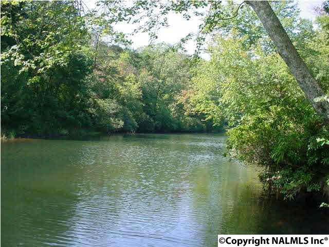 396 County Road 635, Mentone, AL 35984 (MLS #1090616) :: RE/MAX Alliance