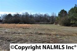 271 Craten Drive, Rainsville, AL 35986 (MLS #1091429) :: RE/MAX Alliance