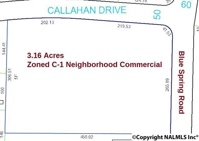 2081 Blue Spring Road, Huntsville, AL 35810 (MLS #1091699) :: Capstone Realty