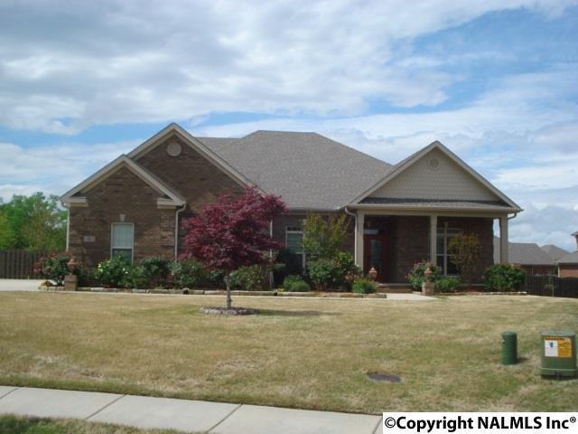 6 Redberry Court, Huntsville, AL 35824 (MLS #1092185) :: Legend Realty
