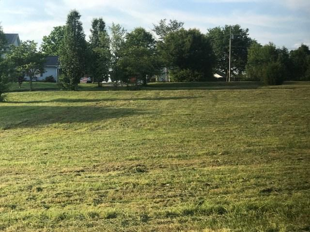 294 Brown Acres Road, Guntersville, AL 35976 (MLS #1093324) :: RE/MAX Alliance