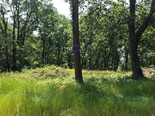 1923 County Road 865, Gaylesville, AL 35973 (MLS #1095292) :: Weiss Lake Realty & Appraisals