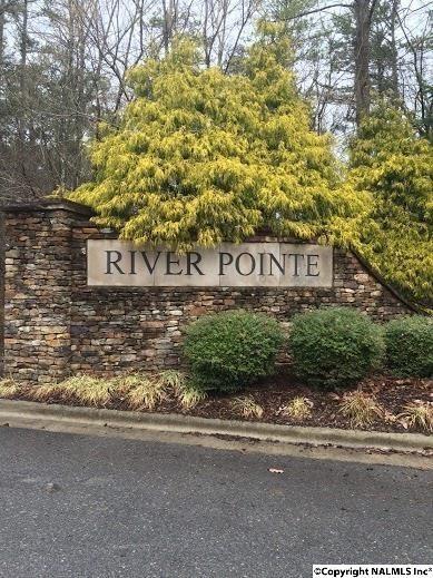 25 River Pointe Drive, Guntersville, AL 35976 (MLS #1097919) :: Legend Realty