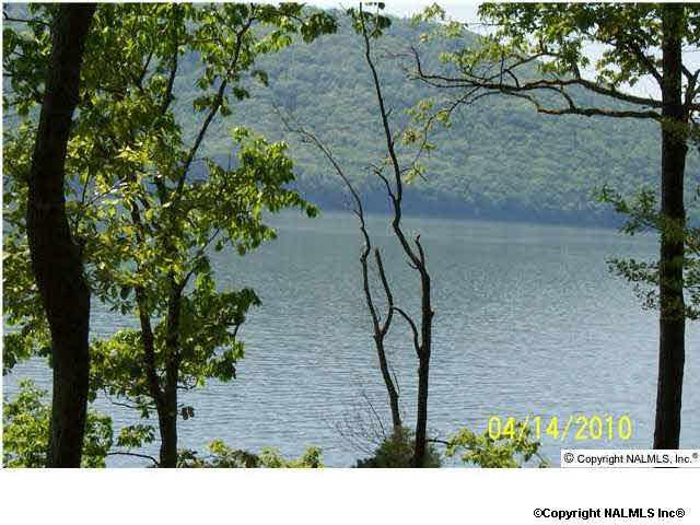 70 Lookout Mountain Drive, Scottsboro, AL 35769 (MLS #1097960) :: Amanda Howard Sotheby's International Realty
