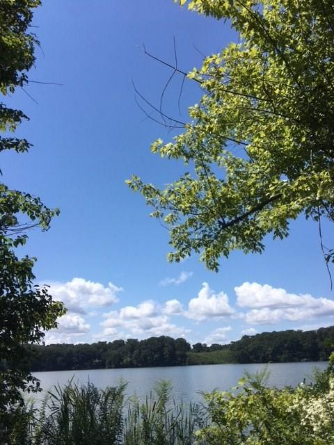 Lot 10 Peninsula Drive, Athens, AL 35611 (MLS #1102173) :: Weiss Lake Realty & Appraisals