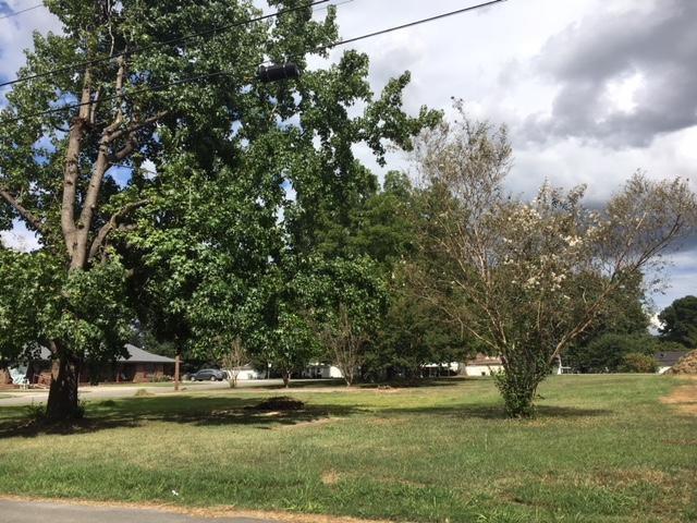 2202 Morgan Avenue, Decatur, AL 35601 (MLS #1102335) :: RE/MAX Alliance