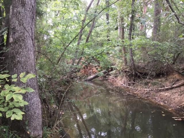 000 Peck Hollow Road, Somerville, AL 35670 (MLS #1103065) :: RE/MAX Distinctive   Lowrey Team