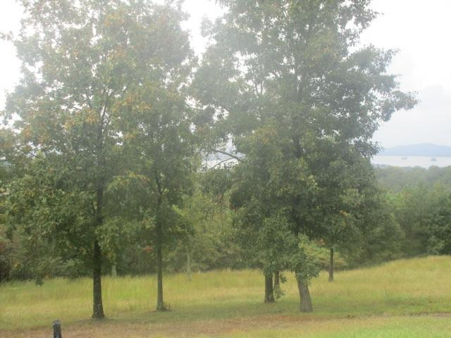 0 County Road 767, Cedar Bluff, AL 35959 (MLS #1104282) :: RE/MAX Alliance