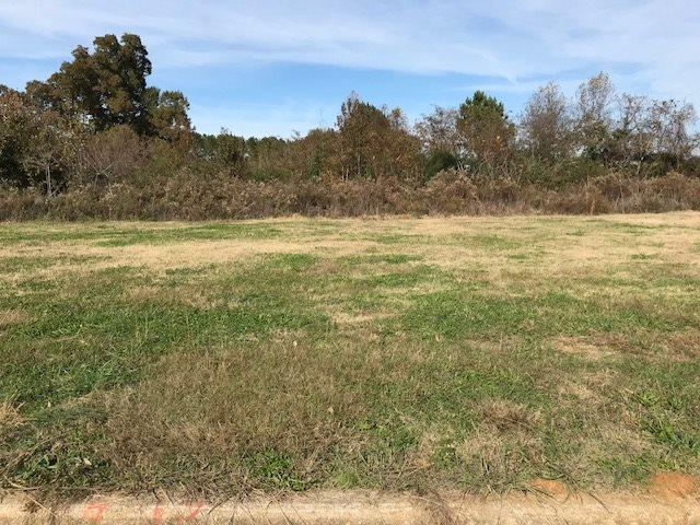 Lot 8 Commercial Drive, Athens, AL 35611 (MLS #1108971) :: Amanda Howard Sotheby's International Realty