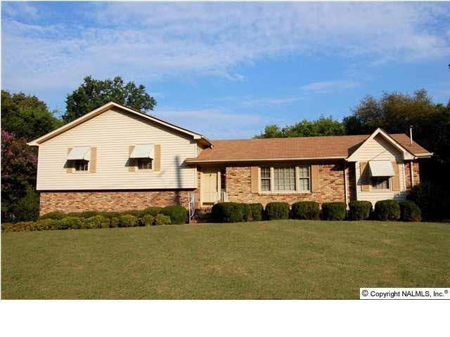 1205 Briar Hollow Trail, Huntsville, AL 35802 (MLS #1109895) :: RE/MAX Alliance