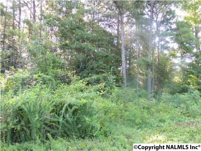 40 Ridge Road, Leesburg, AL 35983 (MLS #1110361) :: Weiss Lake Realty & Appraisals