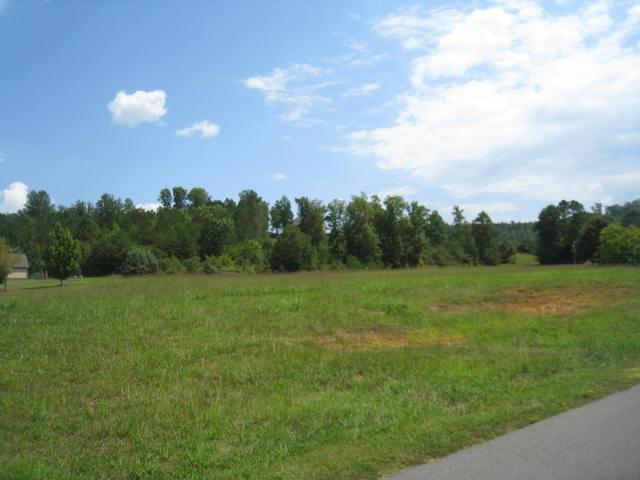County Road 606, Valley Head, AL 35986 (MLS #1110379) :: Legend Realty