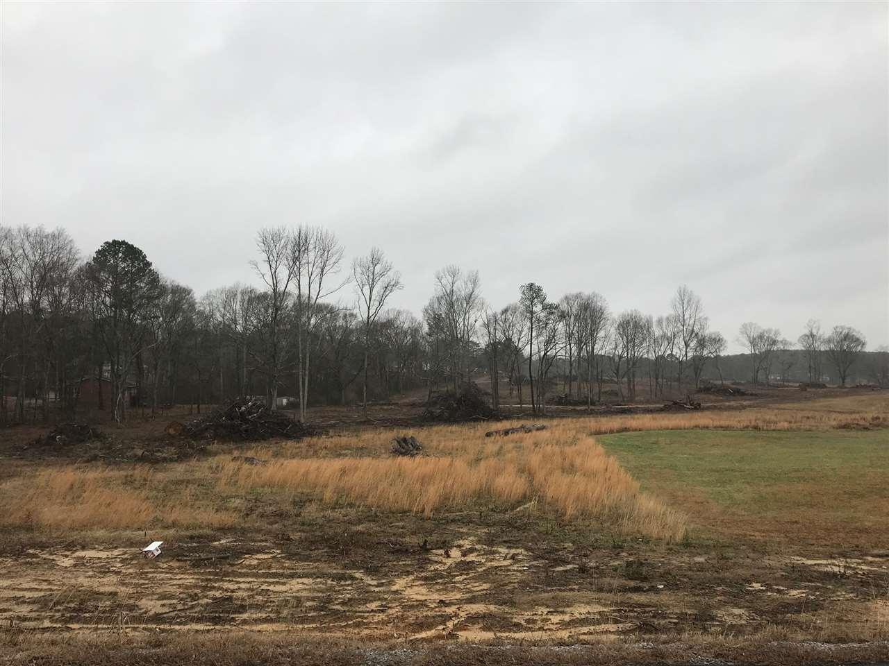Alabama Highway 205 - Photo 1