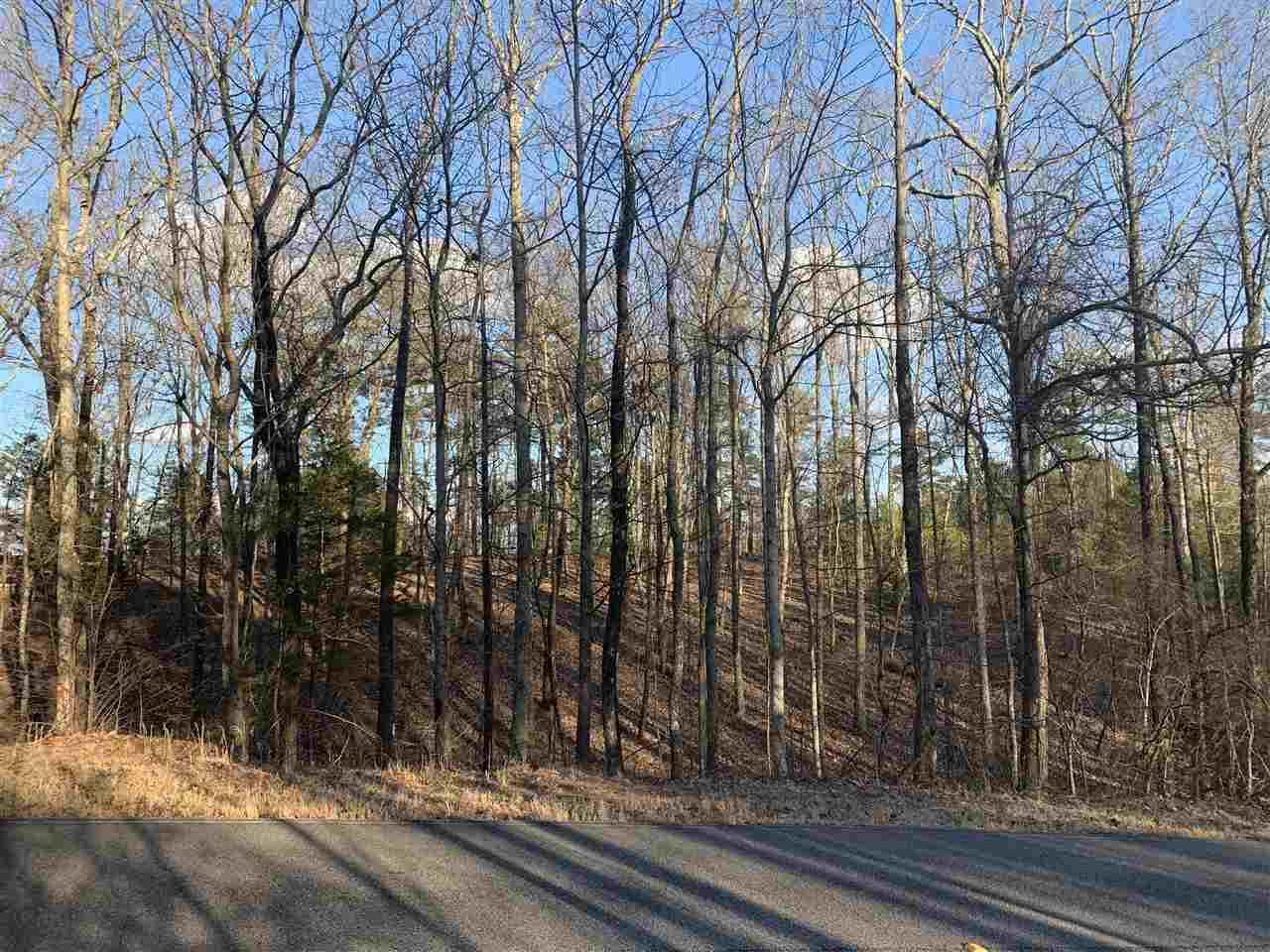 931 Blowing Cave Road - Photo 1