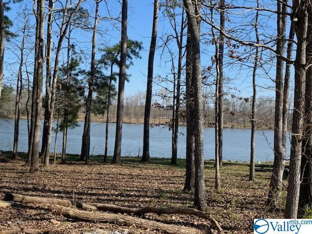 County Road 642, Cedar Bluff, AL 35959 (MLS #1114643) :: Capstone Realty