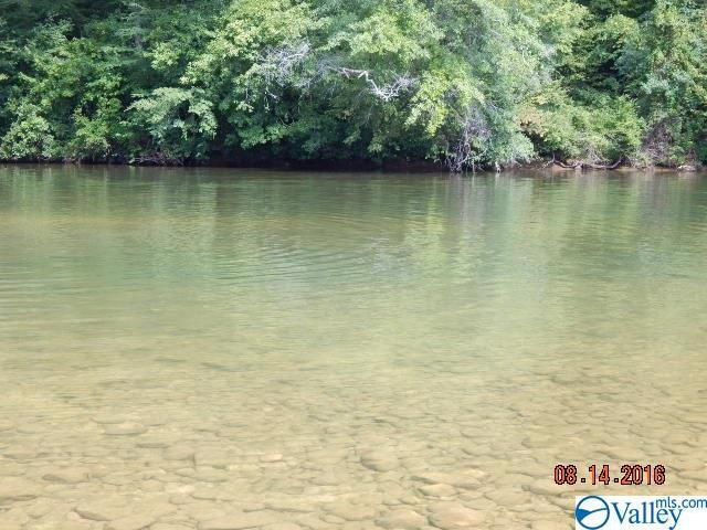Lot 9 & 10 County Road 766, Cedar Bluff, AL 35959 (MLS #1116385) :: Weiss Lake Realty & Appraisals