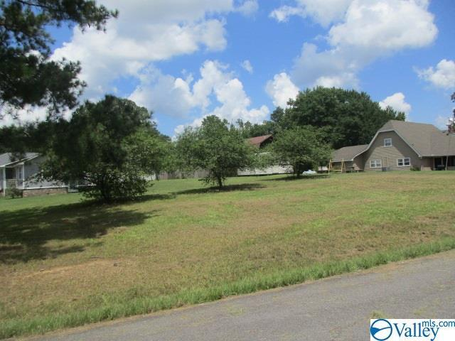 0 Fairway Drive, Attalla, AL 35954 (MLS #1116964) :: Amanda Howard Sotheby's International Realty
