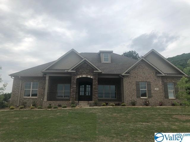 35 Abby Glen Way, Gurley, AL 35748 (MLS #1118133) :: The Pugh Group RE/MAX Alliance