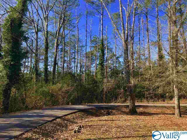 0 Tuskegee Circle, Gadsden, AL 35903 (MLS #1118215) :: Amanda Howard Sotheby's International Realty