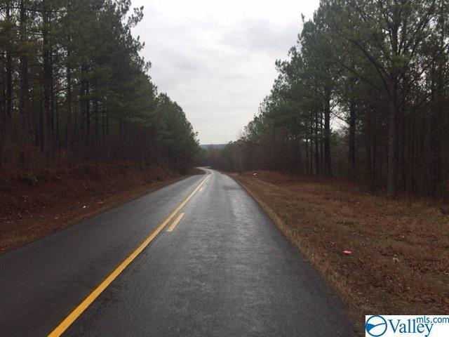 00 County Road 99, Gaylesville, AL 35973 (MLS #1118395) :: Weiss Lake Realty & Appraisals