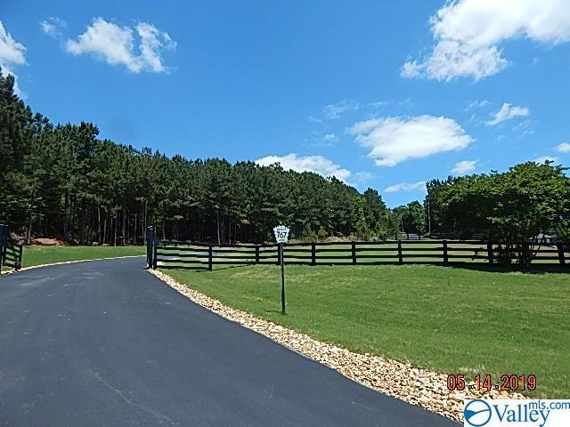 Lot 9 County Road 767, Cedar Bluff, AL 35959 (MLS #1118816) :: Amanda Howard Sotheby's International Realty