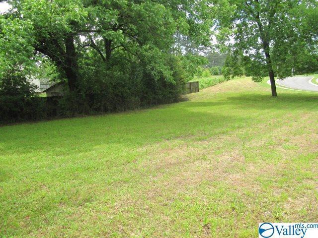 000 Gleneagle Way, Albertville, AL 35951 (MLS #1119148) :: Amanda Howard Sotheby's International Realty