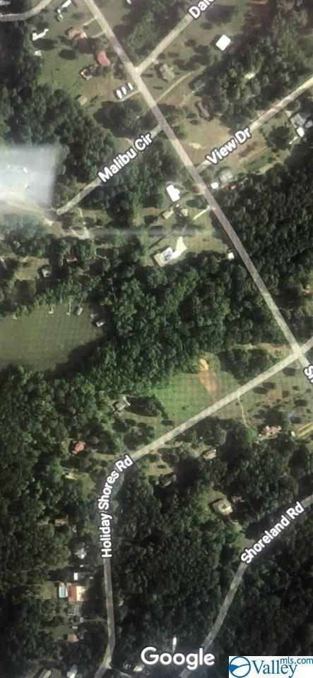 Lot 53 Holiday Shores Road, Scottsboro, AL 35769 (MLS #1119450) :: Eric Cady Real Estate