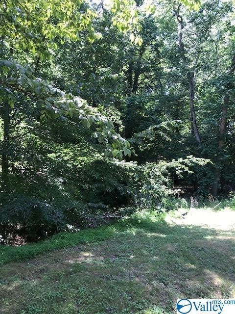 445 Elk Shores Drive, Rogersville, AL 35652 (MLS #1120147) :: Amanda Howard Sotheby's International Realty