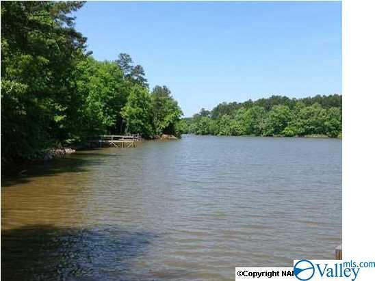 LOT 17 County Road 620, Cedar Bluff, AL 35959 (MLS #1121145) :: Amanda Howard Sotheby's International Realty