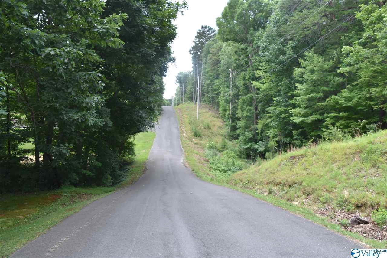 L2 Lynn Drive - Photo 1