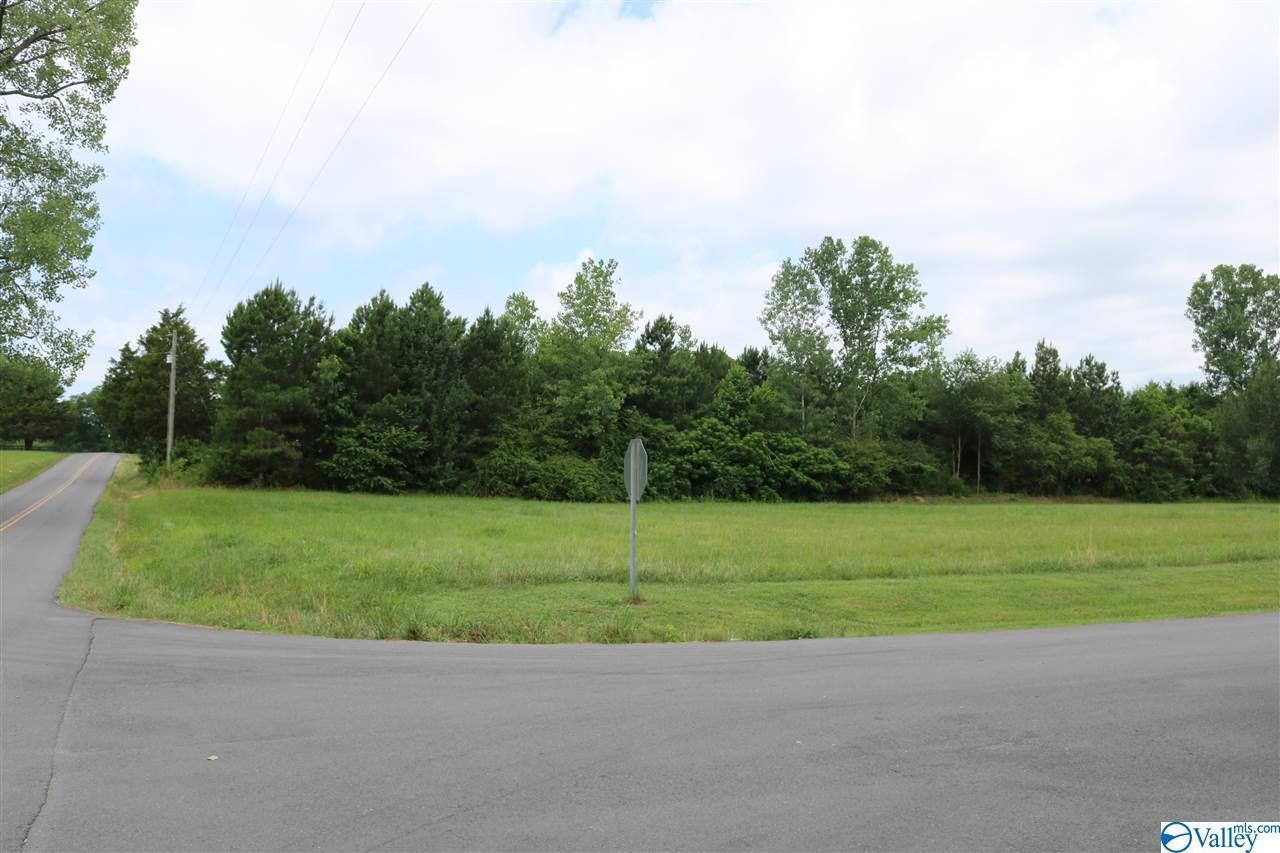 561 County Road 1838 - Photo 1