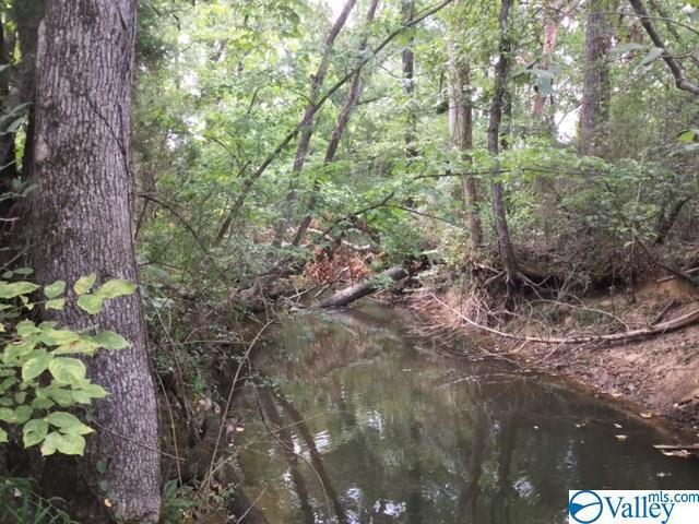 0000 Peck Hollow Road, Somerville, AL 35670 (MLS #1123018) :: RE/MAX Distinctive | Lowrey Team